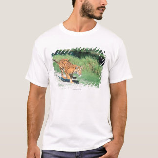 Tiger on path T-Shirt