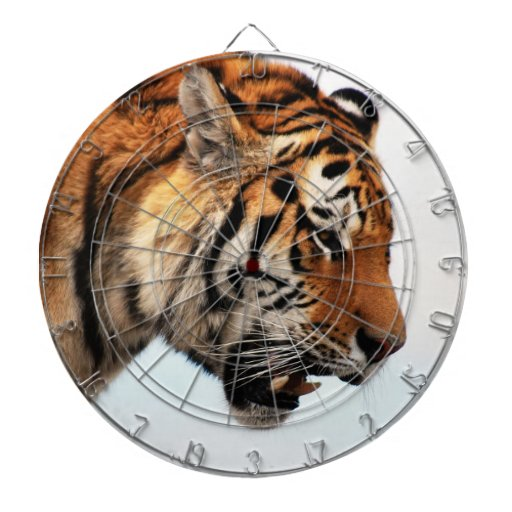 Tiger on the hunt dartboard with darts