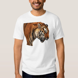 Tiger on the hunt shirts