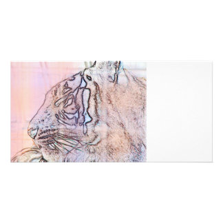 tiger outline with different colours n light lines card