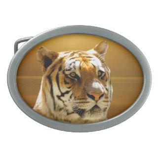 Tiger Oval Belt Buckle