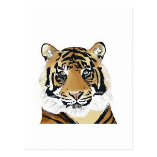 tiger Paint Postcard
