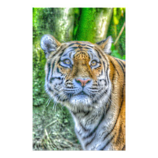 Tiger,painting Stationery Paper