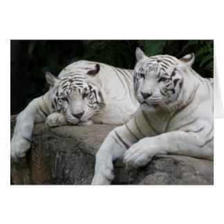 Tiger Pair Greeting Card