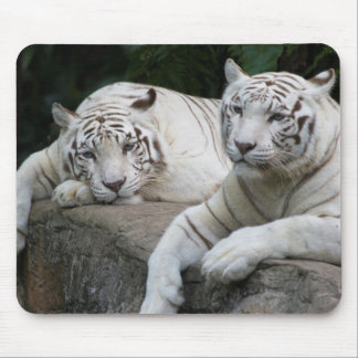 Tiger Pair Mouse Pad