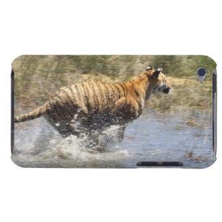 Tiger (Panthera tigris) running through water. iPod Touch Covers
