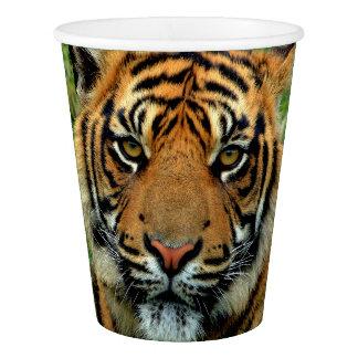 Tiger Paper Cups