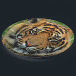 "Tiger Paper Plates<br><div class=""desc"">Great for a tiger themed party. We also have gift wrap and several other party supplies available with this design. This is a gorgeous close up shot of a tiger. He looked so magnificent that I couldn&#39;t resist putting him on several products. Image courtesy of Karen Arnold, editing done by...</div>"