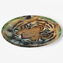 Tiger Paper Plates