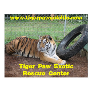 Tiger Paw Exotic Rescue Center Postcard