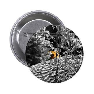 Tiger Peek-a-boo Button