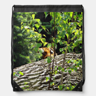 Tiger Peek-a-boo Drawstring Bag