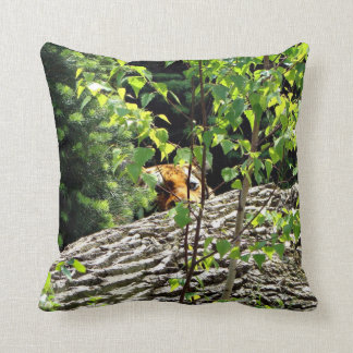 Tiger Peek-a-boo Throw Pillow