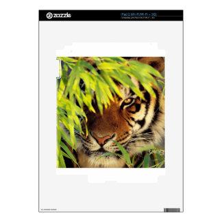 Tiger Peers Behind A Leaf iPad 2 Decals