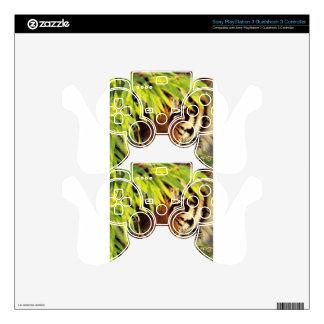 Tiger Peers Behind A Leaf PS3 Controller Skin