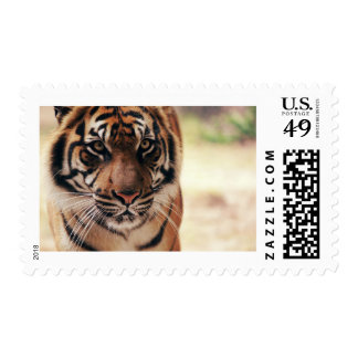 Tiger Photo Stamp