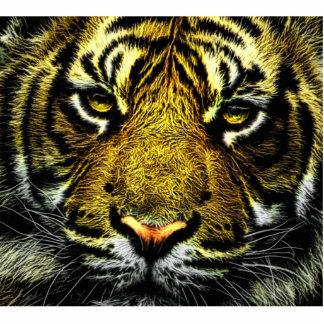 Tiger Photo Cutout