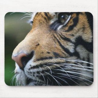 Tiger Picture Mouse Pad