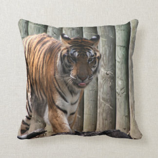 Tiger Picture Throw Pillows