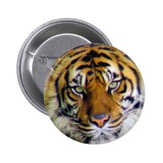 Tiger_ Pinback Button