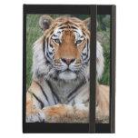 Tiger portrait beautiful close-up photo, gift iPad case