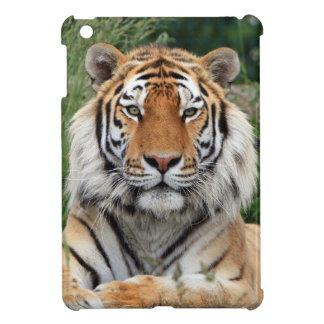 Tiger portrait beautiful close-up photo, gift iPad mini cover