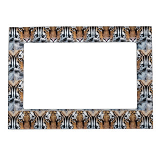 Tiger Portrait in Graphic Press Style Picture Frame Magnet