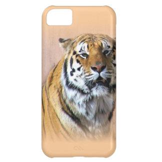 Tiger portrait iPhone 5C cases