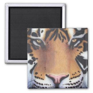 Tiger Portrait Magnet