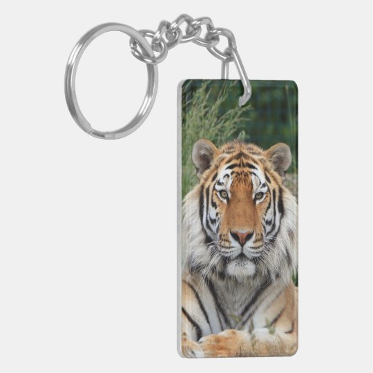 Tiger portrait male beautiful photo,  gift keychain