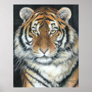 Tiger Poster, Art by Carla Kurt