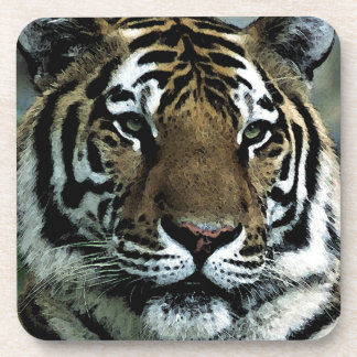 Tiger Power Drink Coasters