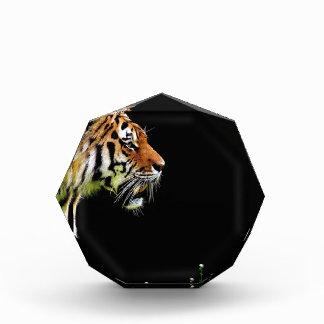 Tiger Predator Fur Beautiful Dangerous Cat Award