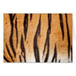 Tiger Print Card