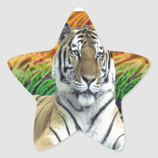 Tiger Print gifts Star Stickers