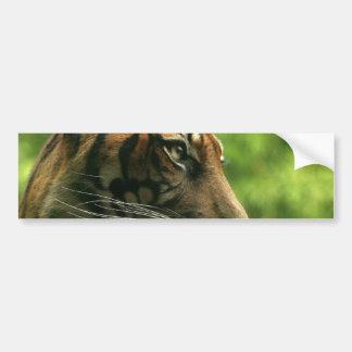 Tiger Profile Bumper Sticker