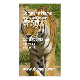 Tiger Prowl Business Cards