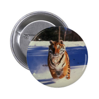 Tiger Racing Over Snow 2 Inch Round Button