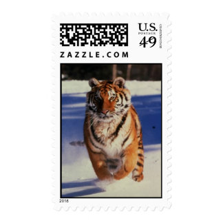 Tiger Racing Over Snow Postage Stamps