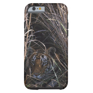 Tiger Reclines in Tall Grass Tough iPhone 6 Case
