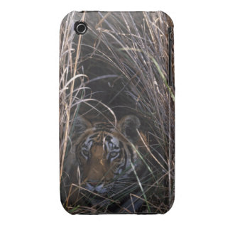 Tiger Reclines in Tall Grass Case-Mate iPhone 3 Case