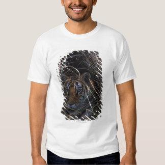 Tiger Reclines in Tall Grass T-Shirt