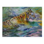Tiger Reflections Postcard