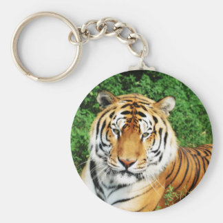 Tiger Relaxing Keychain