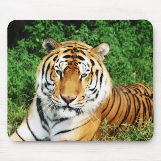 Tiger Relaxing Mouse Pad