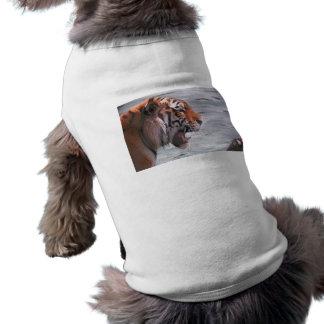 Tiger Roar Pet T Shirt