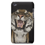 Tiger roaring 2 iPod Case-Mate case