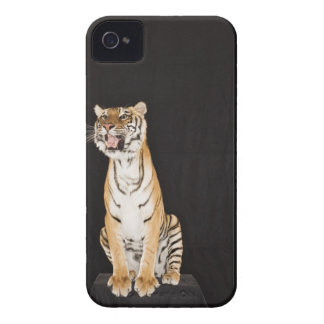 Tiger roaring iPhone 4 covers