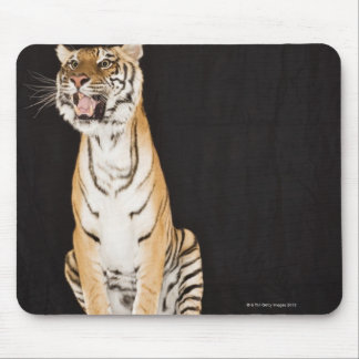 Tiger roaring mouse pad
