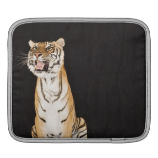 Tiger roaring sleeve for iPads